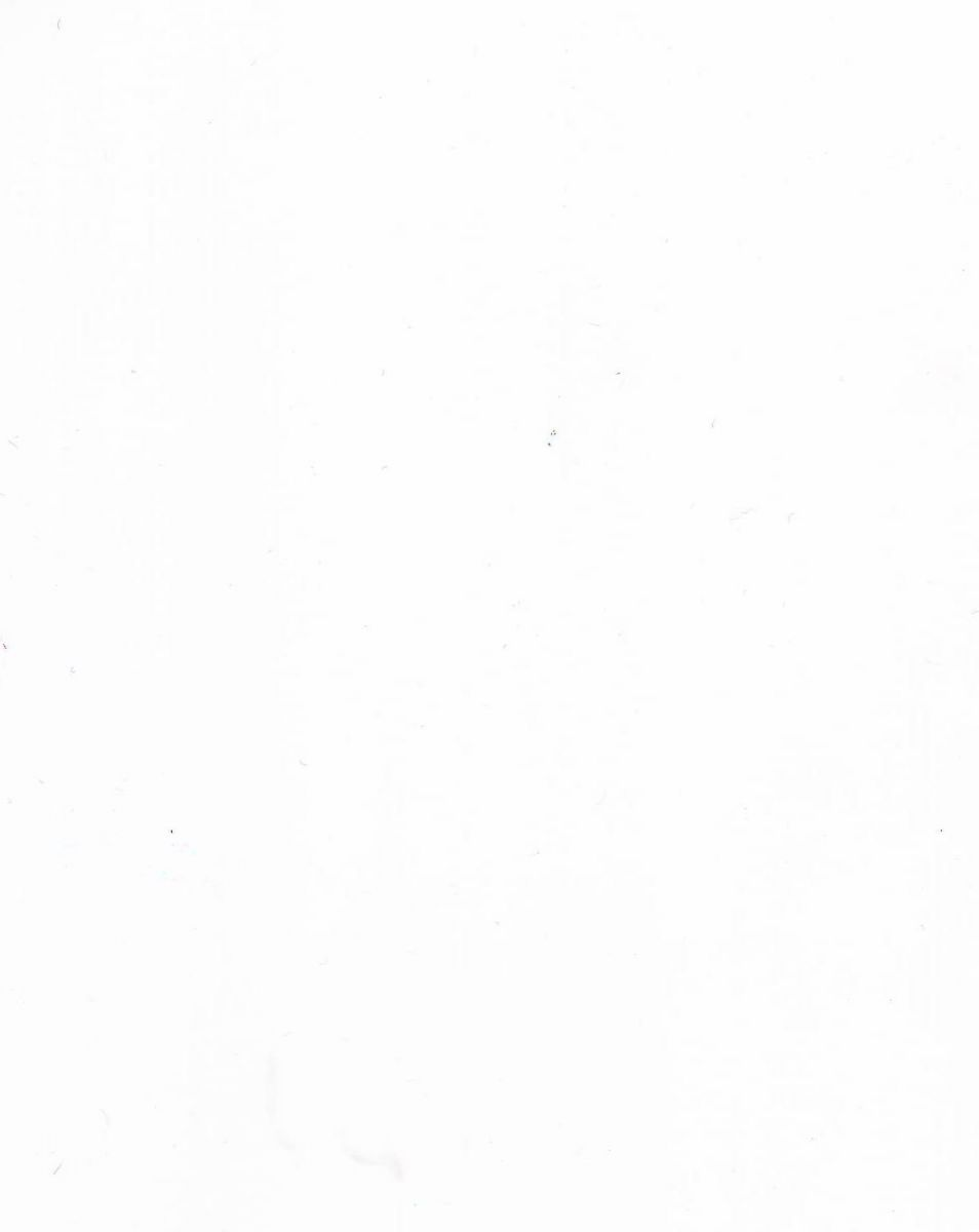 ДСП (белый структурный)