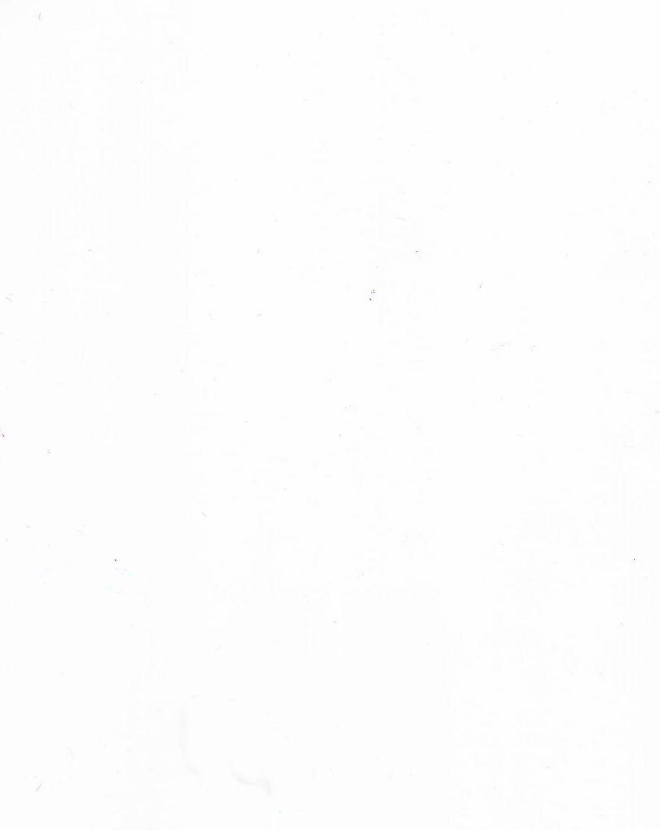 ДСП (белый лак)